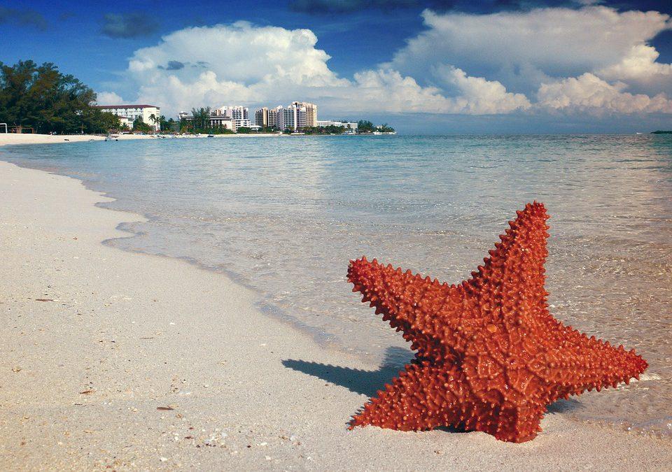 3 îles paradisiaques des Bahamas à découvrir