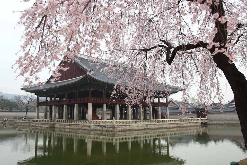 Les mille et une raisons de voyager en Corée du Sud