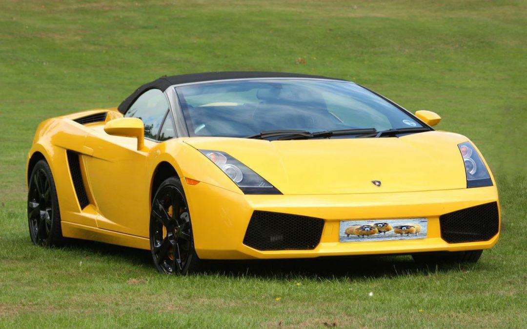 Comment choisir la meilleure GT pour un stage de pilotage ?