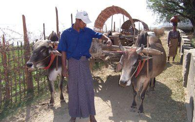 Tout connaître sur les tenues traditionnelles avant de séjourner en Birmanie